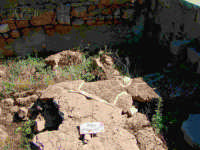 rovine  - Megara hyblea (5189 clic)