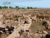 rovine  - Megara hyblea (5301 clic)