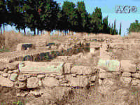 rovine  - Megara hyblea (4541 clic)