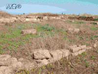 rovine  - Megara hyblea (4419 clic)