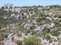 rovine  - Pantalica (2793 clic)