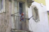 STRANO MODO DI METTERSI ALLA FINESTRA  - Avola (3431 clic)
