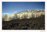 Etna vista all'Infrarosso  - Etna (4615 clic)