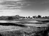 vista della campagna  - Valguarnera caropepe (3322 clic)