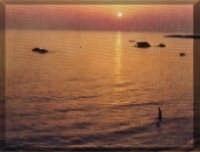Spiaggia Veduta Scuoggiu i fora   - Scoglitti (4551 clic)