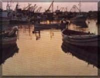 Porto  - Scoglitti (4886 clic)