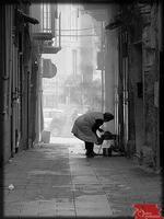 Cotolette e carciofi della Domenica mattina (Licata-quartiere Marina) (5862 clic)