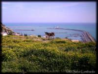 Il porto di Licata dalla strada c.le Sant'Antonino  - Licata (8186 clic)