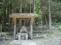 La fontana dlla pineta di Mandrazzi  - Novara di sicilia (4315 clic)