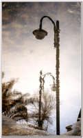 La pozzanghera -   - Agrigento (3324 clic)