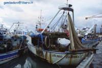 LA barca FEDERICA  - Porticello (6149 clic)