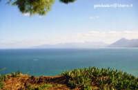 CARAIBI  - Solunto (4251 clic)