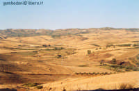 terra bruciata vista da Joppolo - agosto 2004  - Joppolo giancaxio (6043 clic)