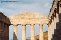 Tempio - agosto 2004  - Segesta (2936 clic)
