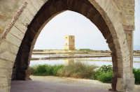 antica torre di avvistamento vista dal museo del sale  - Trapani (4523 clic)