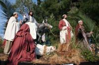 Processione della Via Crucis edizione del 2007  1° Carro Domenica Delle Palme  Proveniente da Betania,Gesu' si reca nella citta' santa   - Buseto palizzolo (1923 clic)