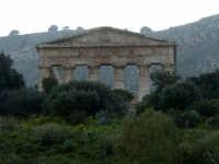 tempio di Segesta  - Segesta (2903 clic)