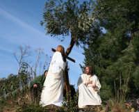 Processione della Via Crucis edizione del 2007 3° Carro  l'agonia nell'orto di Getsemani  - Buseto palizzolo (3141 clic)