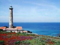 Il Faro  - Ustica (6865 clic)
