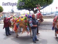 Festivity of Saint Angel|Fête de Saint Ange|Festlichkeit des Heiliger Angelus|Fiesta de San Angel|Festa di Sant'Angelo - 5 e 6 maggio - Sfilata di carretti siciliani e muli parati  - Licata (3582 clic)