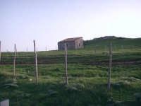 Ovile sui Nebrodi  - Mistretta (4038 clic)
