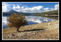 il lago  - Lago di pozzillo (7440 clic)