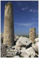 Parco archeologico di Selinunte.   - Selinunte (2958 clic)