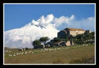 Vista dell'Etna, nei pressi di Centuripe.  - Centuripe (2268 clic)
