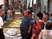 Foto dell'Infiorata 2005 - Assessore Enrico Gangemi  - San pier niceto (7106 clic)