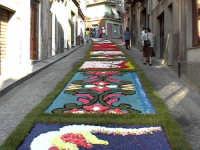 Tappeto di fiori  - San pier niceto (6143 clic)