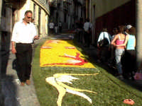 INFIORATA 2005  - San pier niceto (4948 clic)