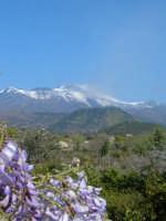 Etna e glicine da Lavinaio - Aci S. Antonio  - Lavinaio (6843 clic)