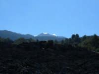 Versante nord. Dal nero della colata del 1981 all'azzurro del cielo di ottobre 2005.  - Etna (2134 clic)