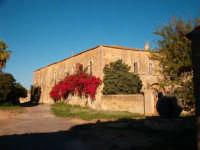 Masseria Silvestri - corte e palazzo baronale  - Granieri (4114 clic)