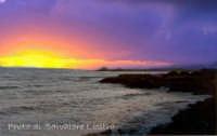 sol ponente Baia dei Coralli ( Punta Braccetto )  - Punta braccetto (6555 clic)