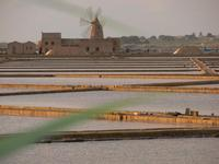 saline  saline con mulino a Marsala  - Marsala (783 clic)