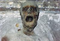 Fù monaco al convento dei Cappuccini a Palermo PALERMO Elio Maria Adamo
