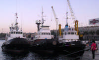 Rimorchiatori all'ormeggio e pescatrici  - Messina (6859 clic)