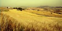 fieno al sole  - Nicosia (3932 clic)