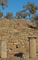 colonne e alberi   - Tusa (6320 clic)