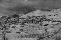 inverno 1937  - Floresta (5723 clic)