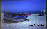 La spiaggia di Punta Grande - foto Pinhole  - Realmonte (2428 clic)