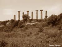 Tempio di Ercole - lato sud  - Valle dei templi (2314 clic)