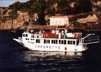 Isola Lachea Acitrezza  - Aci trezza (2707 clic)