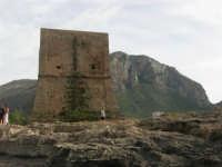 Torre Pozzillo - 1 giugno 2008  - Cinisi (1485 clic)