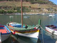 al porto: le barche dei pescatori - 2 ottobre 2007  - Castellammare del golfo (541 clic)