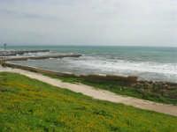 mare mosso - 1 marzo 2009   - Marinella di selinunte (1729 clic)