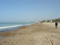C/da Magazzinazzi - 2 novembre 2008   - Alcamo marina (795 clic)