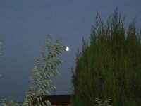 luna piena - 13 ottobre 2008   - Alcamo (723 clic)