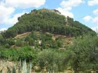 ruderi del castello sulla collina - 28 giugno 2009   - Calatafimi segesta (2320 clic)